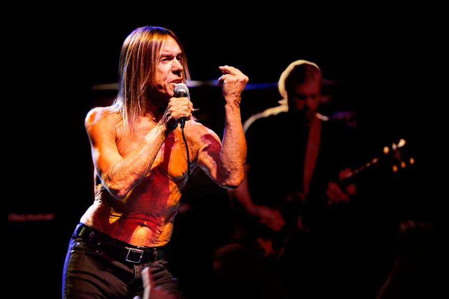 Iggy Pop photo
